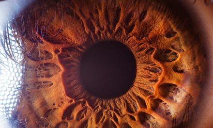 Makro fotky lidského oka
