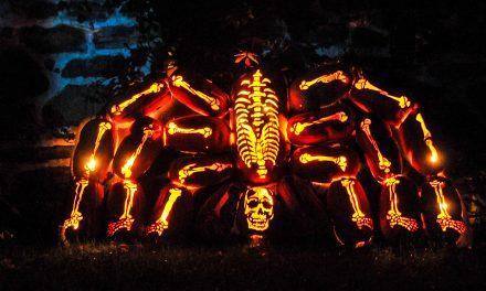 Halloweenské sochy z dýní