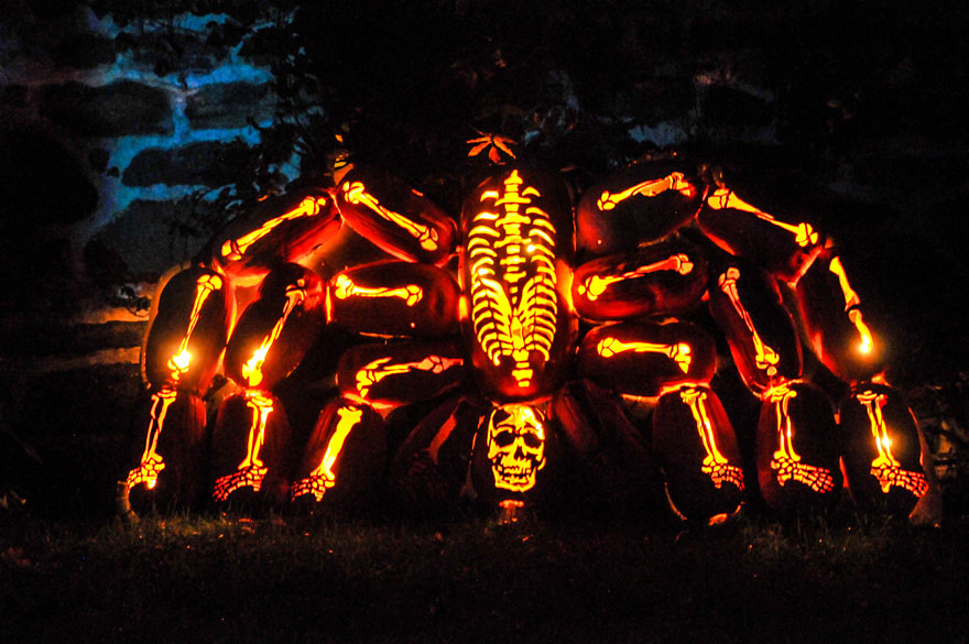 Halloweensk Sochy Z D N