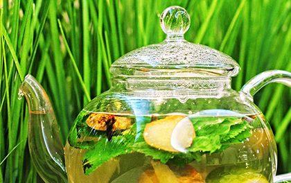 Jak si připravit zázvorový čaj?