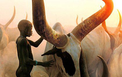 Neuvěřitelné fotografie Dinků! Nechte se vtáhnout do každodenního života největší etnické skupiny!