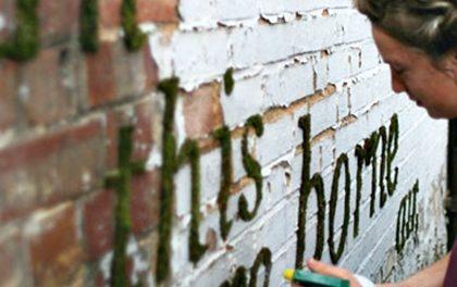 Nudná zeď na zahradě? Vytvořte si graffity, které vás bude bavit!