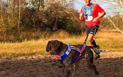 Canicross – Sport, který si zamilujete vy i váš pes!