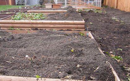 Jaro na zahradě v kostce – Co vše je třeba udělat?
