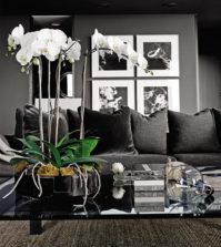 kvetiny-bydleni