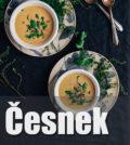 cesnekova-polevka