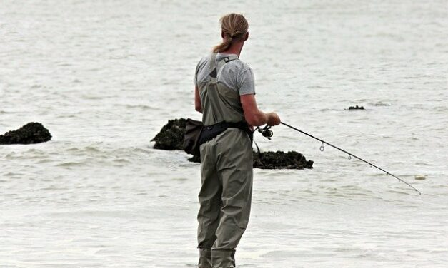 Rybářské potřeby – vlasec, navijáky i pruty na kapry na jednom místě