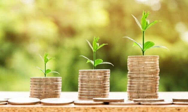 Rychlá půjčka do výplaty pomůže překonat složité chvíle