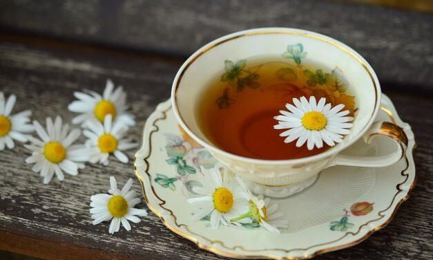 Čaj nepomáhá jen s nachlazením